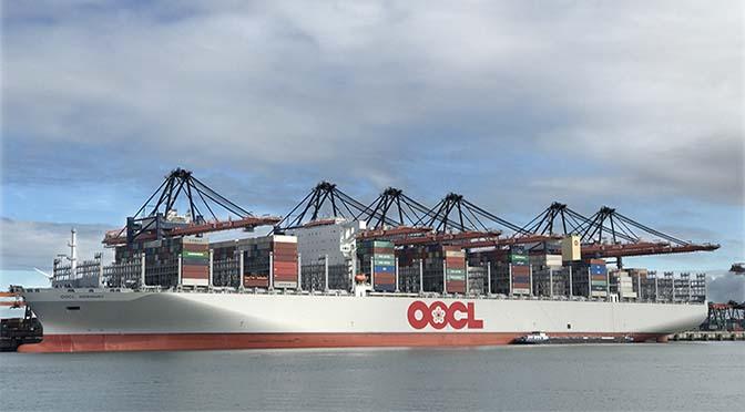 Containeroverslag Rotterdam stijgt ruim tien procent